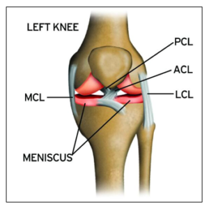 MCL Joint Surgery